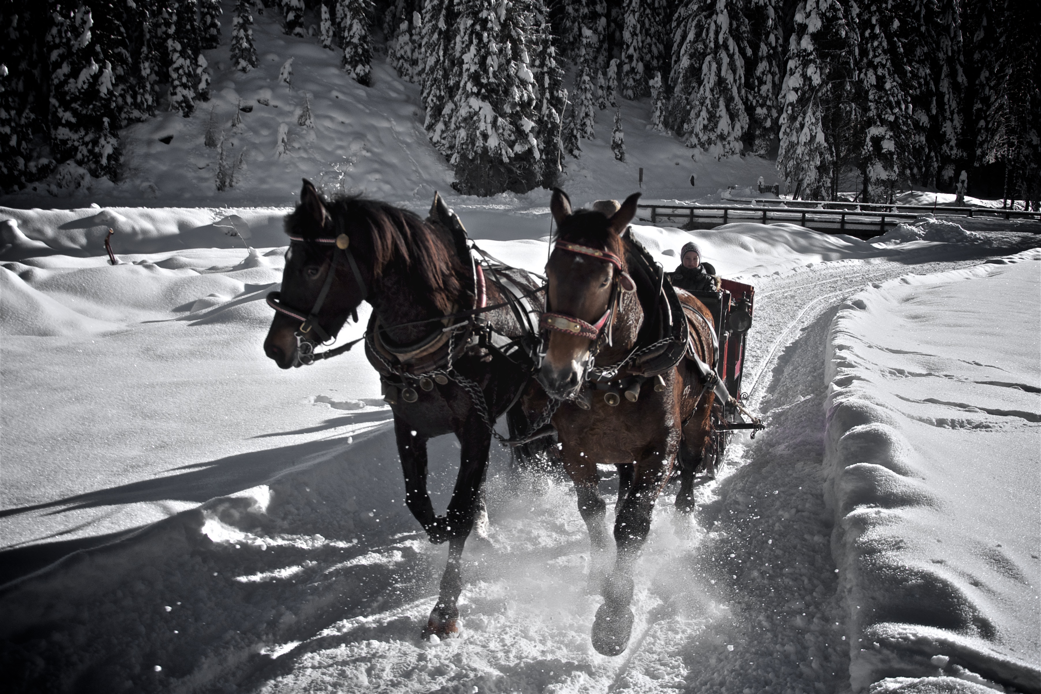 Winkeltal Winter | Außervillgraten | Villgratental