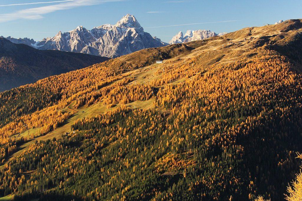 Thurntaler Herbst | Außervillgraten | Villgratental